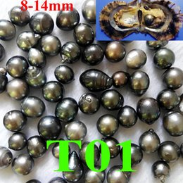 Wholesale One Teardrop - free shipping single black Tahitian pearl 8-14mm in one oyster