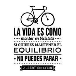 Wholesale Modern Day Classics - Wall Stickers In Spanish Home Decoration - LIFE IS LIKE A BICICLETA vinilo adhesivo de pared con texto albert einstein