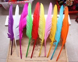 Wholesale Lime Green Feathers - 100pcs 12-14inch (30-35cm) royal blue purple orange lime green ot PINK White dark brown black yellow red Turkey wing feather