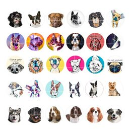 Wholesale Dog Jewelry Charms - newest DOG snap button jewelry charm popper for bracelet 30pcs   lot GL048 noosa,jewelry making supplier