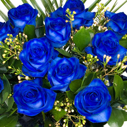 Wholesale Cheap Blue Bouquets - Hot Whole Sale Blue Rose Seeds Free-Shipping Cheap Rose Seeds Charming Flowers 100 Pieces Per Parcel High Quality Seeds