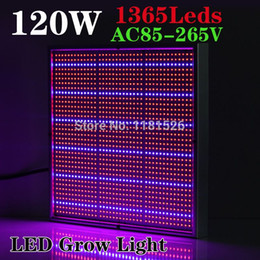 Wholesale Balcony Plant Box - 120W Red+Blue AC85~265V LED Grow Light for Flowering Plant and Hydroponics System For Outdoor Garden or Indoor Balcony Grow Box