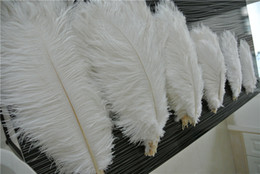 Wholesale wedding centerpiece ostrich feathers - Wholesale 50pcs White ostrich feather plumes for wedding centerpiece Wedding party decor PARTY EVENT Decor supply