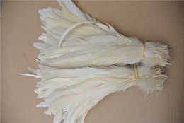 Wholesale Feather Perfect - Free shipping Wholesale 100pcs lot 12-14inch Perfect off White Cock Tail rooster tail Feather coque feather for Costumes decor