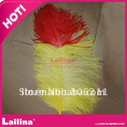 Wholesale Colored Ostrich Feathers Wholesale - Promotion!! Colored Ostrich feather