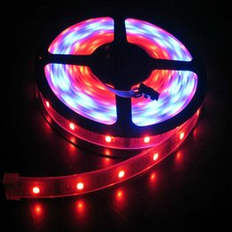 Wholesale Led Strip Rgb 3528 Ip67 - RGB Color Changeable Come With Remote Controller IP67 Waterproof 5M Rell LED Flexible Strip Light Super Bright SMD3528 300LEDS,Free Fedex