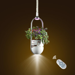 Wholesale Led Chinese Ce Rohs - 2017 new pendant lamp chinese style luxury led droplight plant health light indoor plant light good luck for you