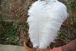 Wholesale Wholesale Centerpiece Supplies - FREE SHIPPING 100 pcs lot 16-18inch(35-40cm) white Ostrich Feather plumes for wedding centerpiece wedding party event decor festive decor
