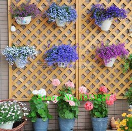 Wholesale Petunia Seeds - 20 different Hanging petunia seeds, blended-color flower seeds plant seeds,garden petunia - 100 pcs