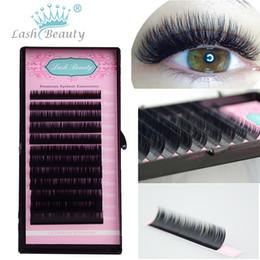 Wholesale Tray Eyelash Extension - Wholesale-All Sizes False Eyelash Extensions Mink Black Material JBCD Curls 1 Tray Lot