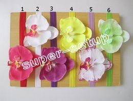 Wholesale Phalaenopsis Fabric Flowers - 36 pcs Baby handmade Headwear Hair Accessories phalaenopsis fabric Flower with stretchy hair band SG8603