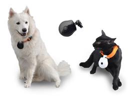 Wholesale Mini Pet Camera - Hot Mini Pet Camera Dog Camera Cat LCD Video Camcorder Pet Cam Recorder Finder Wireless Collar Pets Eye View Camera Pet Recorder
