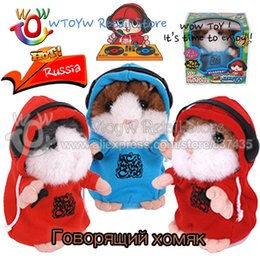 Wholesale Dj Hamster - Wholesale-9pcs lot Box pack 2 color 12cm Russian talking DJ hamster woody o'time Voice Record hamster Learning & Education