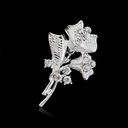 Wholesale Morning Glories Plants - Free postage 2016 new fashion morning glory brooch diamond brooch pin collar high-end European and American hot models factory direct