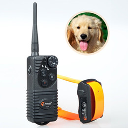Wholesale Dog Shock Control - 550M remote control Completely waterproof Rechargeable Electric Shock Aetertek AT-216 Pet Dog Training Collar Trainer for 1 2 3 Dogs
