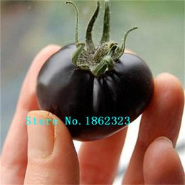 Wholesale Green Tomatoes Seed - Green multicolored tomatoe, tomato seeds, Four Seasons planting - 100 Seed particles vegetable seeds