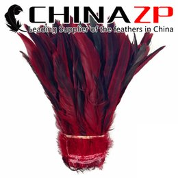 Wholesale Bronze Rooster - Leading Supplier CHINAZP Crafts Factory 800 pieces per lot Good Quality Dyed Red Half Bronze Rooster Chicken Feather Strung