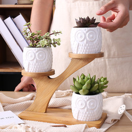 Wholesale Decorative Bamboo - 1 Set Ceramic Owl Garden Pots Modern Decorative Nursery Succulent Plant Pot 3 Bonsai Planters With 3 -Tier Bamboo Shelf
