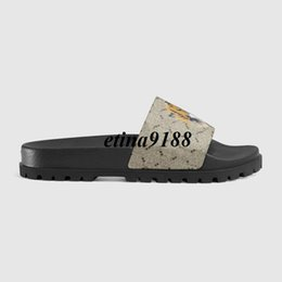 Wholesale Sandals Watermelon - 2017 mens fashion slide sandals with tiger bengal head printing leather and Molded rubber footbed size euro 40-45