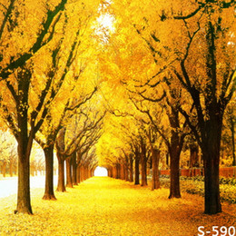 Wholesale Solid Color Vinyl Photography Backdrops - Autumn Scenic Maple Tree 5X7ft Thin Vinyl Backdrops Computer Printed Children Wedding Photography Background Studio Backdrop