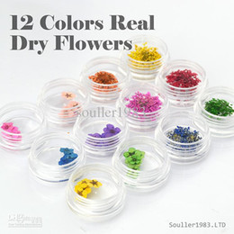 Wholesale Dry Flower For Nail Decoration - Wholesale-Wholesale - New 2015 supernova Sale 3d Nail Art Decorations 12 Colors Real Dry Flower Dried Flowers For UV Gel &Acrylic Nail