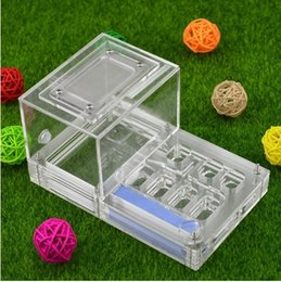 Wholesale Ant House - 16*10*8.5cm moisture with feeding area ant nest ,ant farm acryl, insect ant nests villa new pet advanced mania for house ants