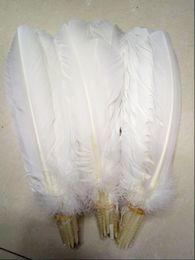 Plumes de dinde blanc dinde ronde plumes plumes 10-12 pouces / 25-30 cm ? partir de fabricateur
