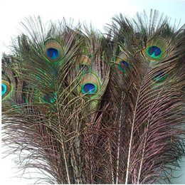 Wholesale Peacock Feathers Accessories - Genuine Elegant Decorative Real Natural Peacock Feather Home Decoration Material Flowers Bouquet Accessories About 25 To 30cm E678L