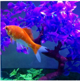 Wholesale Magical Fishes - Retail Magical novel Robot Fish Activated Turbot Electronic Pets Toys Electric Robofish Swimming Clownfish