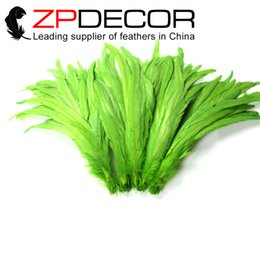 Wholesale Lime Green Feathers - ZPDECOR 30-35cm(12-14 inch) Handwork Party Festival Supplies DIY Craft Dyed Lime Green Rooster Tail Feather for Sale