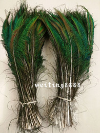 Wholesale Natural Peacock Tail Feathers - 200pcs lot pretty 35-40cm 14-16 inches Wedding decoration DIY peafowl natural tail peacock feather sword Left and right sides is symmetrical
