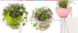 Wholesale Wholesale Plastic Bonsai Pots - Plastic Hanging Planter Bonsai Spider Plant Colorful With Chains Flying Flowerpot Flower Pot 100pcs Lot