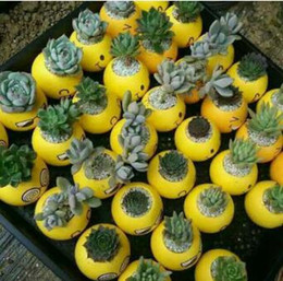 6 Styles New Mini Emoji Decorative Planters Pots Cartoon Ceramic QQ  Expression Plant Flower Planters Garden