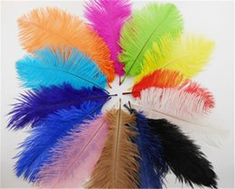 Wholesale Party Supply 15 - Hot Sale 120pcs lot 15-20cm 5.9-7.8inches Multi-Color Ostrich Dyed Feathers Wedding Party Decoration DIY Clothing Supplies Wholesale IF3