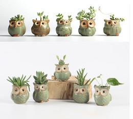 Wholesale Mini Succulents - Cartoon Owl -Shaped Flower Pot For Succulents Fleshy Plants Flowerpot 5pcs  Set Ceramic Small Mini Home  Garden  Office Decor 1603
