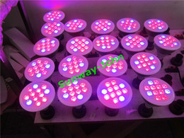 Wholesale E27 36w Grow - LED Grow Lights 36W 54W E27 LED Grow light bulbs 660nm Red 460nm Blue PAR30 Par38 Flower Plant Hydroponics System AC85-265V