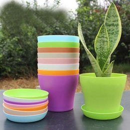 Wholesale Small Yards - NEW5pcs lot Beauty Design Flower Pot with pallet Plant Vase Yard Home Garden Decoration Small Colorful Growing vegetables Free Shipping