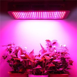 Wholesale Indoor Hydroponic Growing Systems - Free Shipping Full Spectrum 600W LED Grow Lights SMD-5630 AC85-265V Indoor Hydroponic Systems Plants Lamps For Flowering And Growing