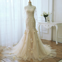 Wholesale Real Fairy Photos - Champagne Mermaid Wedding Dress Long Sleeves Fairy Plus Size Wedding Dresses Sheer with Lace Applique Bridal Gowns