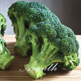 Semi di broccolo online-Broccoli Vegetable 100 Seeds Facile da coltivare da semi Semi di heirloom vegetale Very Delicious