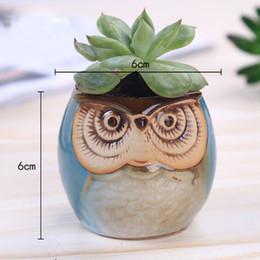 Wholesale Indoor Planter Pots Wholesale - 200Pcs Ceramic Owl Flower Pot Small Clay Pot Succulent Lovely Indoor Garden Plants Nursery Pots Desktop Flower Bonsai Planter