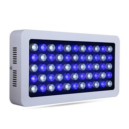Wholesale Fish Systems - 165W fish aquarium led lighting hydroponic systems indicator Water vivid plant growth Free shipping Energy Saving ocean