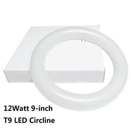 Wholesale Ballast For Lighting - 9 Inch Circline 12W T9 LED Light Bulb Daylight 6000K Replacement for Fluorescent FC9T9 without Ballast circular ring tube circle lighting