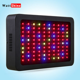 Wholesale Led Grow China - tomato seeds flower seeds rare 300w led grow lights china, full spectrum led grow lamps for Greenhouse Hydroponics Systems