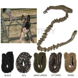 Wholesale Coyote Tactical - Tactical Dog Leash Military Training Tactical Bungee Leash Combat US Amry Dog Lead Harness Collar Nylon Coyote 5 colors #4042