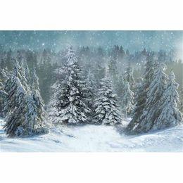 2019 fallen foto kulisse Fallende Schneeflocke Christmas Photography Backdrop Vinyl Stoff Grey Sky Kiefern Wald im Freien landschaftlich Winter Schnee Foto Studio Hintergrund günstig fallen foto kulisse