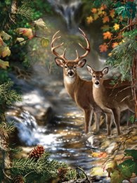 Wholesale Cheap Cross Stitching - New Cheap Home Decorative Diamond Painting Cross Stitch of 2 Deers in Forest Digital Picture with Embroidery Kit for Living Room