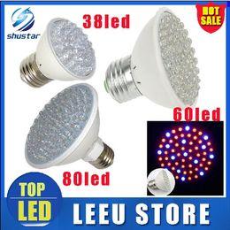 Wholesale Led Light Bulbs Housing - DHL SHIP led 2.2w 3w 4.5 W E27 Red Blue 38 60 80 led leds Hydroponic green house flower garden Light LED Plant Grow Growth Light Bulb Lamp