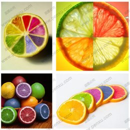 Wholesale Organic Decorations - Bonsai tree rainbow lemon seeds organic fruit home garden garden decoration plant 20pcs B06