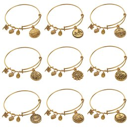 Wholesale Chains Bangles Gold Plated - Alex And Ani bangles adjustable Charm statement bracelets gold silver Wiring expandable pendant bangles band cuffs bangles